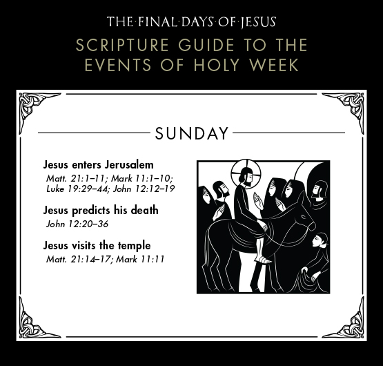 2-Final-Days-of-Jesus_Holy-Week-Sunday